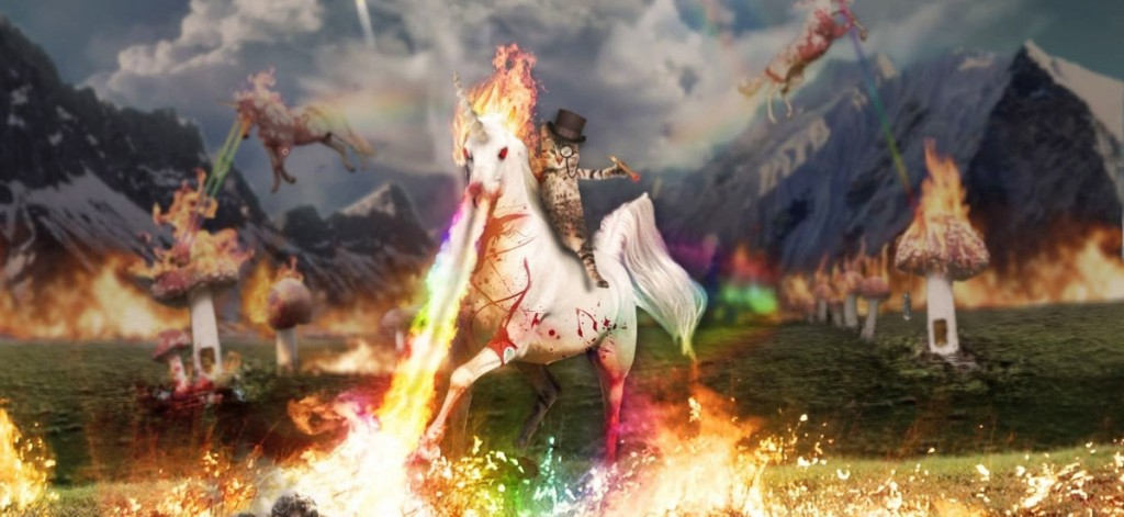 You can be cool but you can never be a cat riding a fire breathing unicorn cool